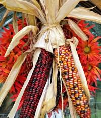 Bitcorn Harvest #7